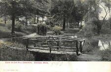 VIEW IN OAK HILL CEMETERY OWOSSO MICHIGAN BRIDGE POSTCARD (c. 1907)