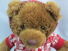 AEROPOSTALE BROWN STUFFED PLUSH TEDDY BEAR RED WHITE AERO A87 ZIPPER HOODIE TOY