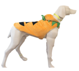 Dog Costumes - Halloween