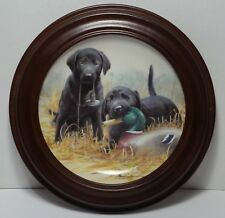 Beginners Luck Franklin mint plate puppies duck frame