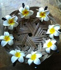 Set Of 8 Bali Bridal Wedding Party Plumeria Foam Hair Clip