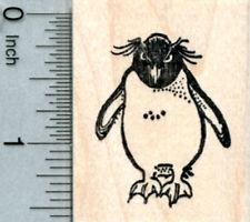 Rockhopper Penguin Rubber Stamp E31607 WM