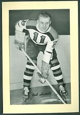 RED Hamill 1934-43 Group 1 Beehive '34 NHL Hockey Photo NMM Boston Bruins