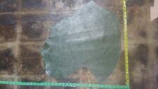 italian leather hide skin patent moss green cow 2mm 6oz #2717