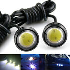 Bolt On Screw 9W LED Eagle Eye Backup Light Fog Driving Lamp Car Motorcycle