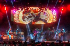 Widespread Panic - Full Band - 16 x 20 Inch Photo / Poster - Live Concert - 2017
