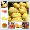 50 Pcs Seed Bonsai Fruit Cantaloupe Melon Honey Dew Green Flesh Muskmelon Garden