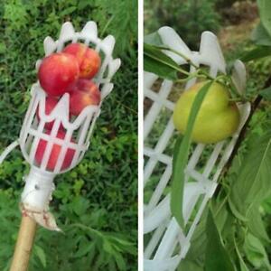Plastic Fruit Picker Catcher for Apples, Peaches, Cherries, Berries, Figs