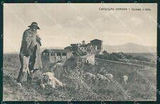 Roma Città Campagna Romana Pastore Pecore Cane PIEGHINA cartolina QT2316