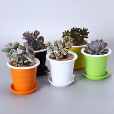 Meshpot 5PCS Double Layer Succulent Pot Plant Container/Pot Plastic Flower Pot