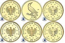 Deutschland 5 x 20 Euro Gold Der Pirol 2017 Heimische Vögel Set Mzz A D F G J