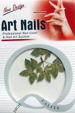 Nail Art Blätter Grün Trockenblume, Dried Flowers, Trocken Blume, Echte Blüten