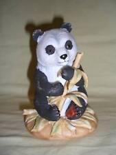 Roman Baby Bear Picnic Collection Panda Bear Nice