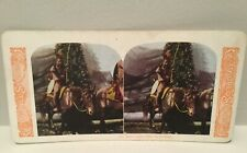 Antique Colored Stereograph Stereo View Card 111 Sioux Indian Chief He-No-Fraid