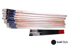 15pc Artist Craft Brush Set Assortment for Acrylic Oil Watercolor Painting Diy