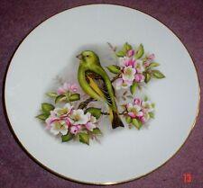 Birds Royal Worcester Pottery Dinner Plates