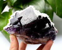 1.6lb NATURAL Purple FLUORITE  with Calcite Crystal Cluster Mineral Specimen