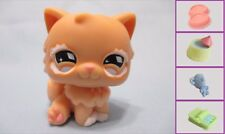 Littlest Pet Shop PERSIAN KITTY CAT #490 + FREE Accessory 100% Authentic