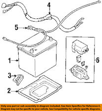GM OEM-Battery Cable 30013131