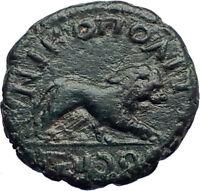 JULIA DOMNA 193AD Nicopolis ad Istrum Ancient Roman Coin  Nemean LION i73213