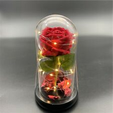 Crystal dome sed roses with lights.