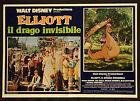 CINEMA-fotobusta ELLIOTT IL DRAGO INVISIBILE walt disney, REDDY, DALE, ROONEY