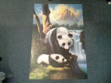 Panda and Cub Poster. Artwork by Simon Dewey. Athena International 1993
