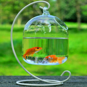 Clear Hanging Glass Aquarium Fish Bowl Tank Flower Plant Vase Decoration