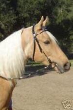 Dark Oil Brown Leather Western Bridle w/Silver Ferrules & Reins Horse Size