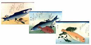 3x ANDO HIROSHIGE Fish Sea-Life Japanese Woodcut, NEW Fine Art Giclee  Print