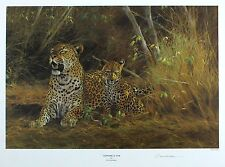 "Kim donaldson ""leopard & cub"" savannah signé lim ed! taille: 40cm x 52cm neuf rare"