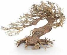 Amtra legno Oriental Wind 3 SM Radice Decorazione Naturale Acquario Dolce