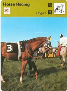 SECRETARIAT 1978 SPORTSCASTER Card #29-04 LINGO I