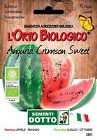 Semi ROYAL SLUIS Anguria Sugar Baby