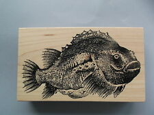 100 PROOF PRESS RUBBER STAMPS BIG FAT FISH NEW wood STAMP
