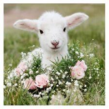 DIY Diamond Embroidery Sheep and Flowers Diamond Painting Cross Stitch Kits W3W6