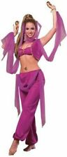 Arabian Princess Aladdin Hot Pink Harem Genie Belly Dancer Women Costume STD