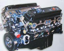 Mercruiser STROKER 6.2L NEW 340 Hp.Engine Long Block 2000-2014
