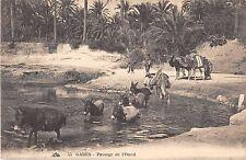 CPA TUNISIE GABES PASSAGE DE L'OUED