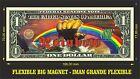 RAINBOW IMAN BILLETE 1 DOLLAR BILL MAGNET