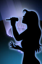 OVER 780 PROFESSIONAL KARAOKE HIT SONGS - PLAYS ON ANY DVD PLAYER - 4 DVD SET!