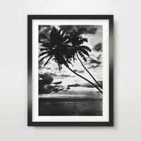 BLACK WHITE TROPICAL ART PRINT Photography Poster A4 A3 A2 Palm Trees Horizon
