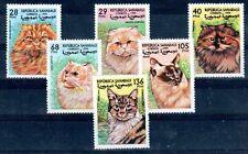 CHAT Sahara série de 6 timbres de 1999 ** NEUF LUXE - CAT KATZE