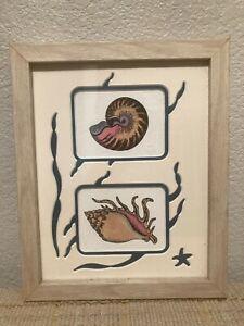"Beautifully Colored Fancy Matted Art Seashells 8 x 10"" by Decorel, Inc"