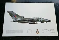 Squadron Prints Tornado GR.1 ZA463'GL' 20 Squadron RAF Laarbruch No.187 April 85
