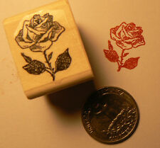P24 Miniature rose flower rubber stamp WM