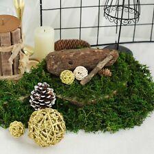 Green 50g Natural Reindeer Moss Basket Vase Fillers Wedding Event Party Crafts