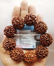 7 Mukhi Rudraksha / Seven face Rudraksh Bracelet 9 beads - 25 mm -Lab Certified