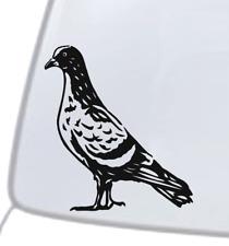 Pigeon Dove Vinyl Decal Sticker Car Window Wall Bumper Feral City Bird Animal