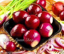 ONION RED - SCARLET - Intensive taste  approx.1250 SEEDS 5gr/0,17oz rich Vit. C